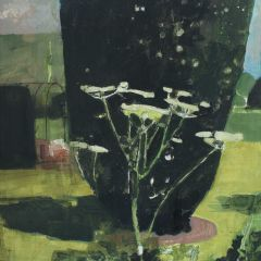 Cow Parsley by Julian Sutherland-Beatson